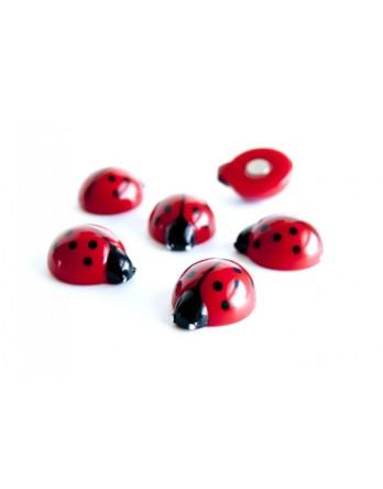 Trendform magneet - magnet ladybug - lieveheersbeestje - 6 st