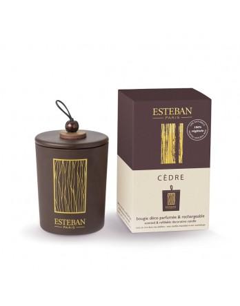 Esteban Classic Cedre geurkaars deco 170gram