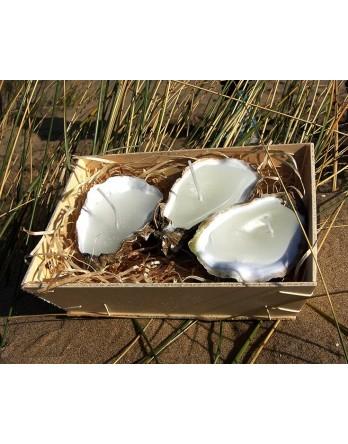 Ambachtelijke oesterkaarsen, verpakking 2 -3 stuks