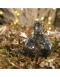 Ashleigh & Burwood Woodland geurbrander klein