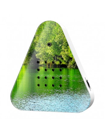 Lakesidebox idyllisch bosmeer - bosmeer print